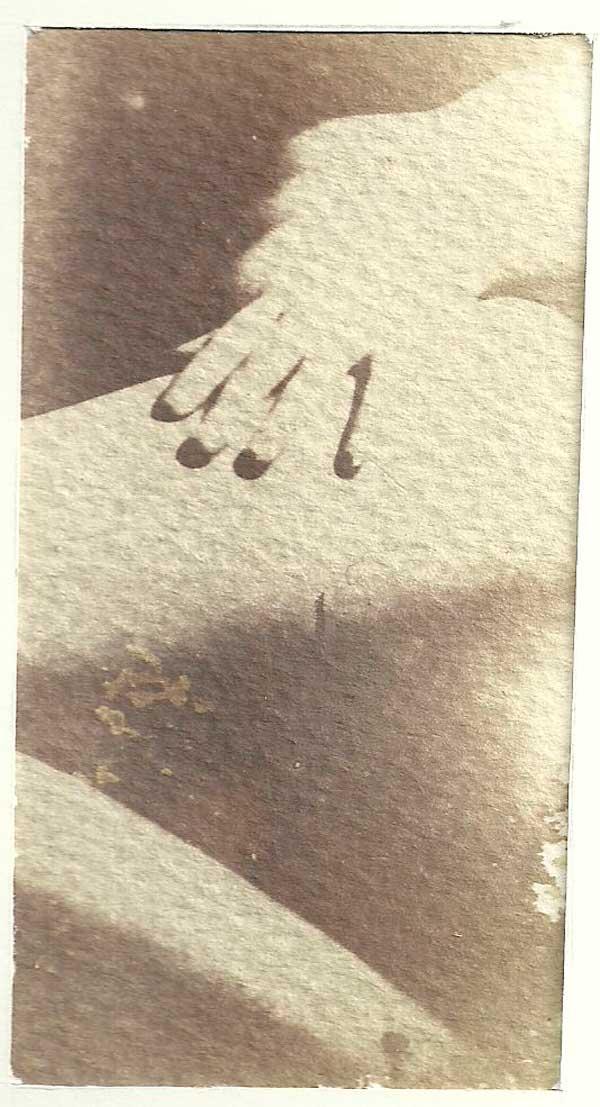 Marron Van Dyke. desnudo. Procesos antiguos